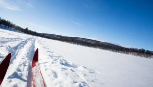 Cross-country skiing taster