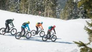 fat bike elettriche